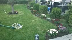 Sherbime Profesionale Ofrojme sherbime gjelberimi