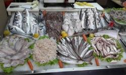 Turizem Bar Dhe Restorante Peshk te Zihniu-Sherbim Taxi