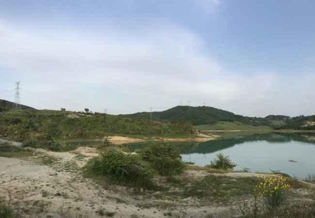 Okazion Toke tek Liqeni Kasharit