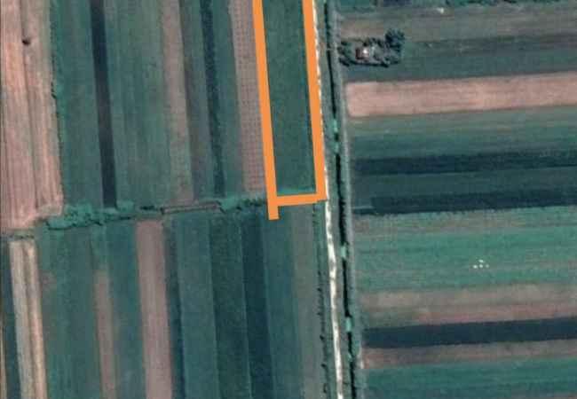 SHITET TOKË ARE + TRUALL NË BUBULLIMË, LUSHNJE Shitet tokë are + truall në Bubullimë, Lushnje. Toka ka sipërfaqe totale 100