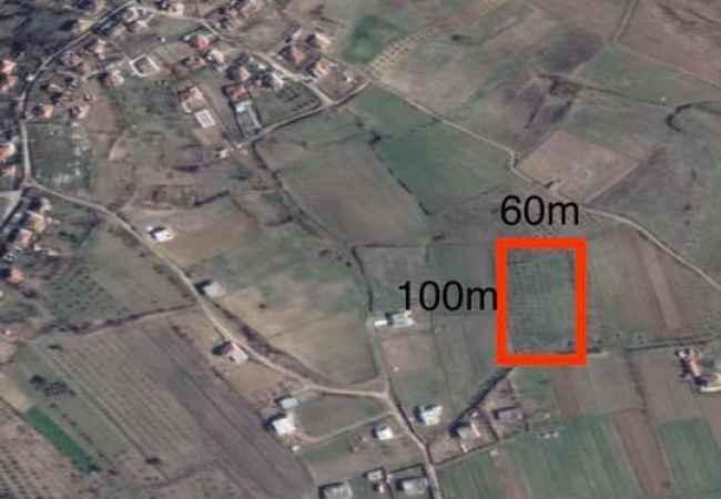 Okazion!!! Shes Toke 6000 m2 Shijak, Gjepalaj Gjepalaj,ShijakShitet Toke-ullishte •💶Cmimi: 13 euro/m2📐Siperf