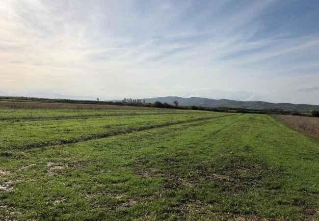 SHITET TOKË ARE NË KARBUNARË, LUSHNJE Shitet tokë are në Karbunarë, Lushnje.Sipërfaqa e tokës është 7159 m²